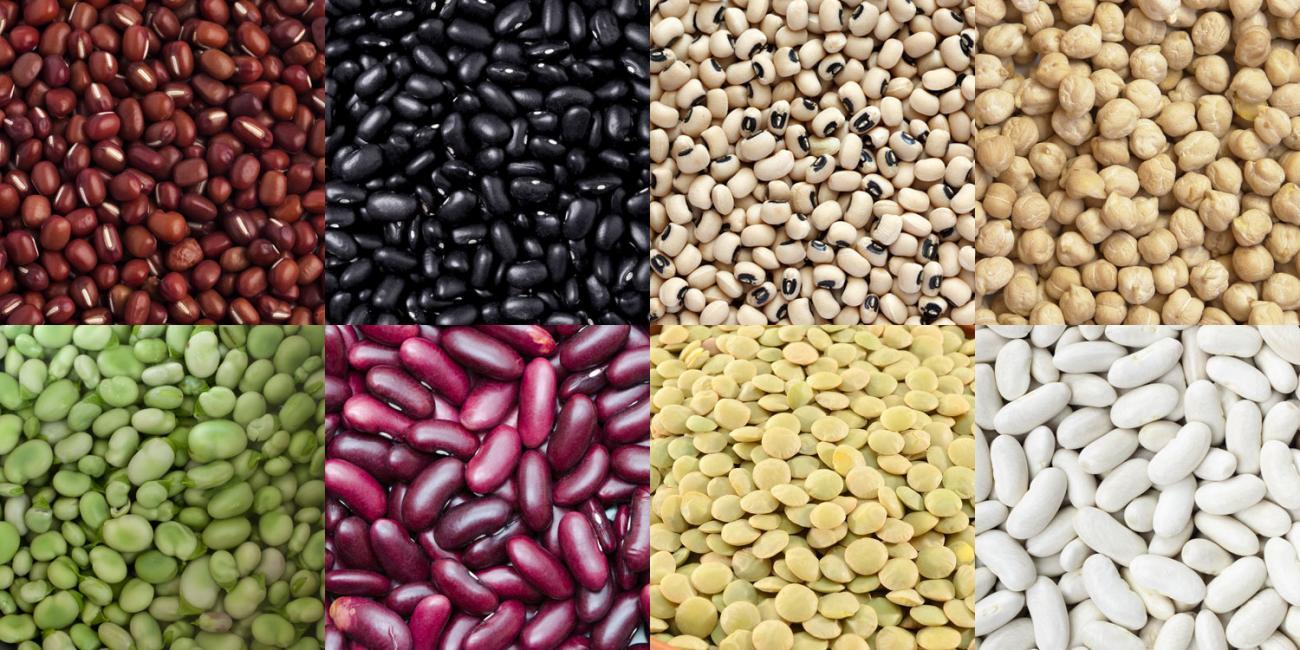 bean_banner